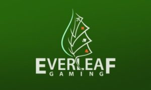 Everleaf Gaming director charged with misappropriation