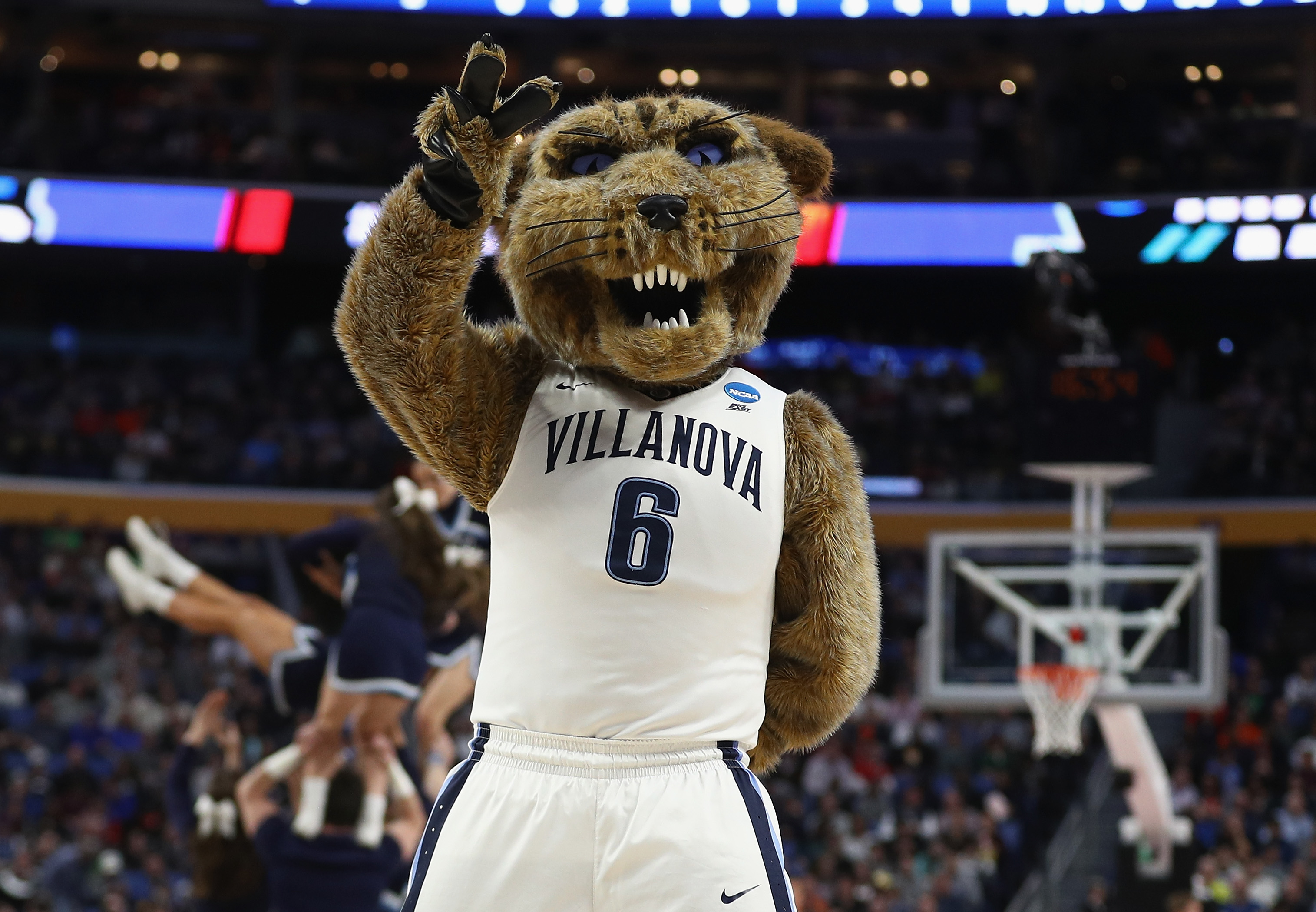 Villanova mascot, Will D Cat