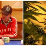 Former Poker Pro Luong Bui Accused of Running Major Cannabis Operation in Northern Ireland