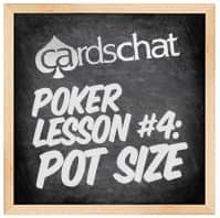Lesson 4: Pot Size